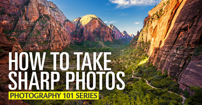 Basic Photography Tutorial - A Beginner's Guide to Taking Sharp Photos
