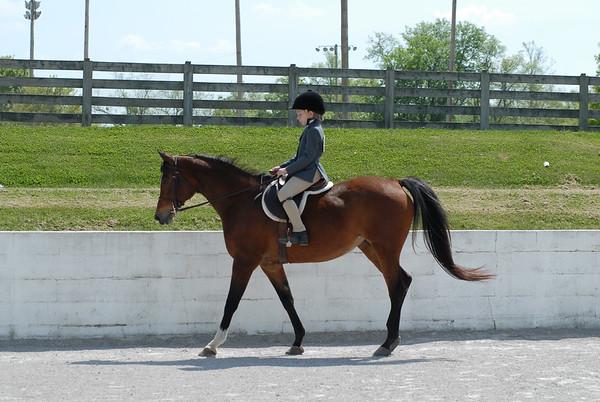 Classes 21 Thru 24 Pleasure/Equitation Walk-Trot