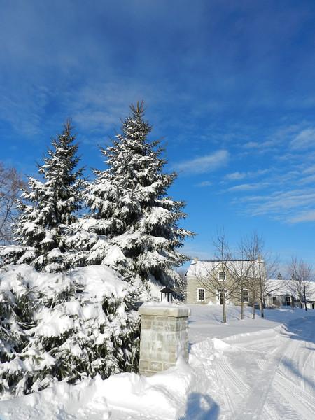 fantastic snow-7151.jpg