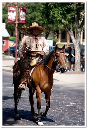 2008 Fort Worth National Cowboy day