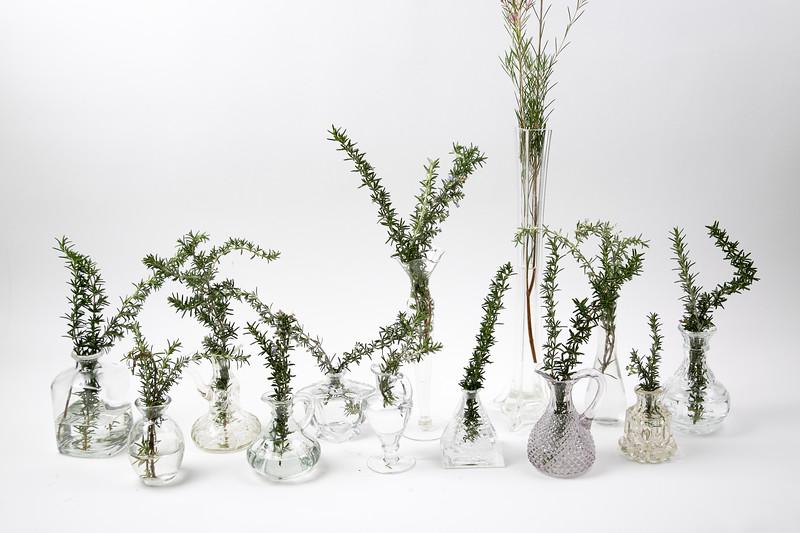 Vases-3009.jpg