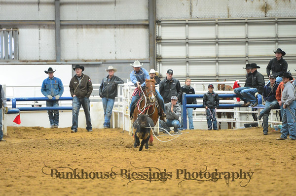 Open Calf Roping ~ Short GO