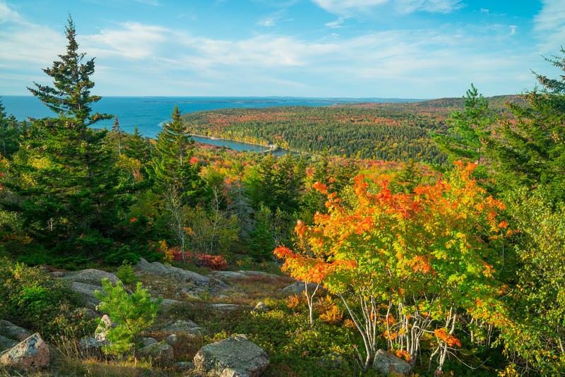 Acadia NP Fall 2019-32.jpg