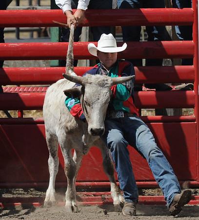 Fortuna jr  rodeo 2016