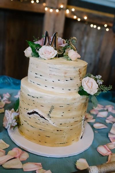 2018-megan-steffan-wedding-608.jpg