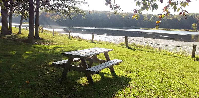 Picnicking at Hemlock Lake