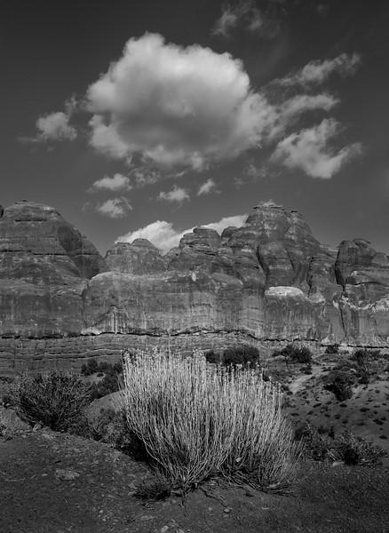 XK4L5291 - Utah and Arizona - 2011-February-27.jpg