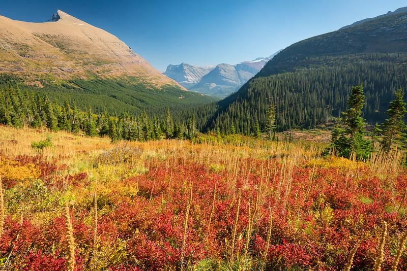 Glacier NP, Sunrise at Many Glacier, Hike at Iceberg Lake Trail, Moose at Fishcap Lake along the Swiftcurrent Trail.