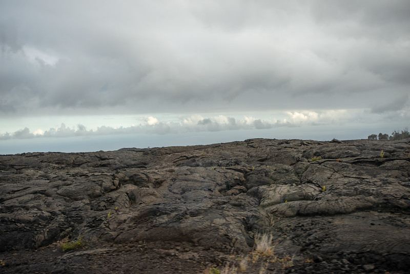 Hawaii2019-396.jpg