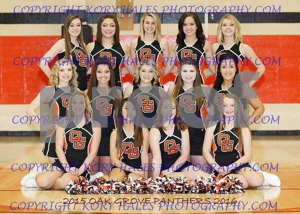 2015-2016 Winter Cheerleading