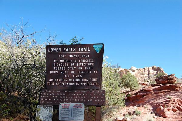 Lower Calf Creek Falls Hike