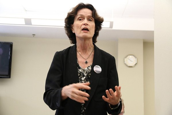 Carol Kingsley, candidate for San Francisco Superior Court Judge, 2014