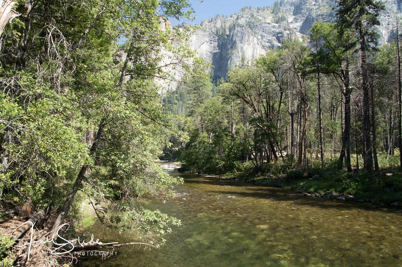 Yosemite 2018 -104.jpg