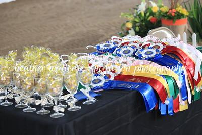 Summer Solstice Horse Show 2019