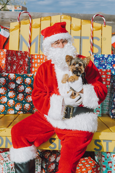 12.5.20 Mutts Fort Worth Santa
