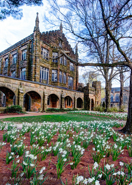 Sewanee University of the South Spring 3.jpg