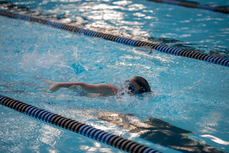lcs_swimming_kevkramerphoto-890.jpg