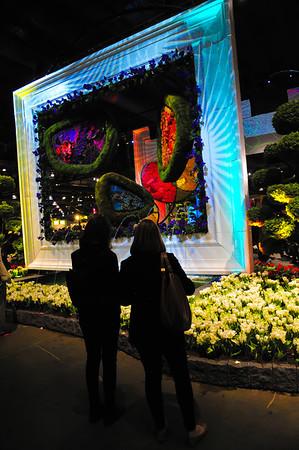 2014 Philadelphia Flower Show
