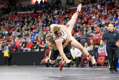 2017 WIAA State Wrestling Individual and Team