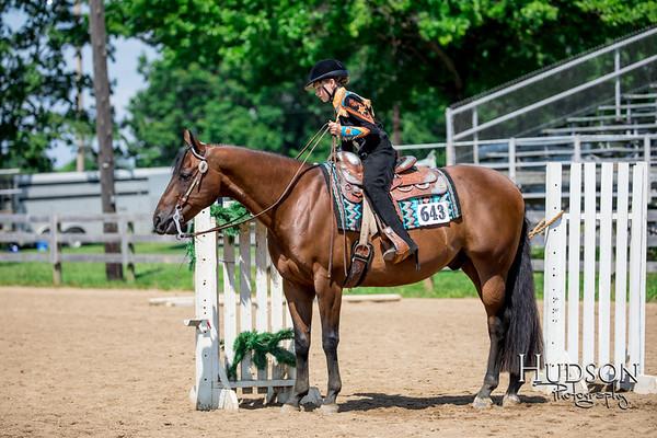 34 Open Trail Horses Jr