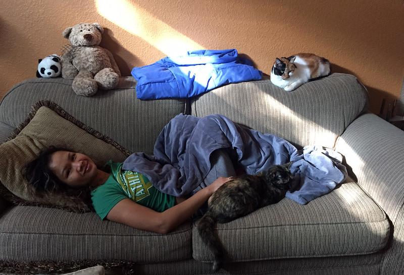 malida cats.jpg