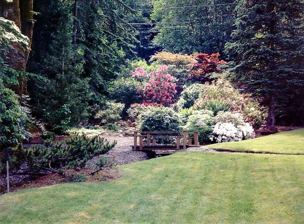 Alice's Bainbridge garden.jpg