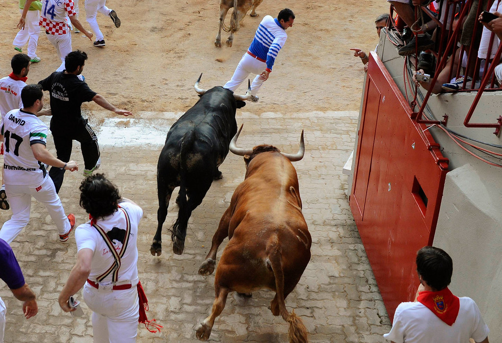 . Runners are chased by Torrestrella fighting bulls at the entrance to the bull ring during the fifth running of the bulls of the San Fermin festival in Pamplona July 11, 2013. No serious injuries were reported in a run that lasted two minutes and forty five seconds, according to local media. REUTERS/Eloy Alonso