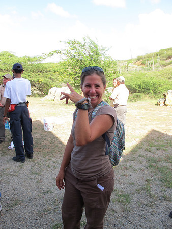 All Aruba Photos