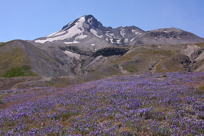 Mt St Helens - Washington