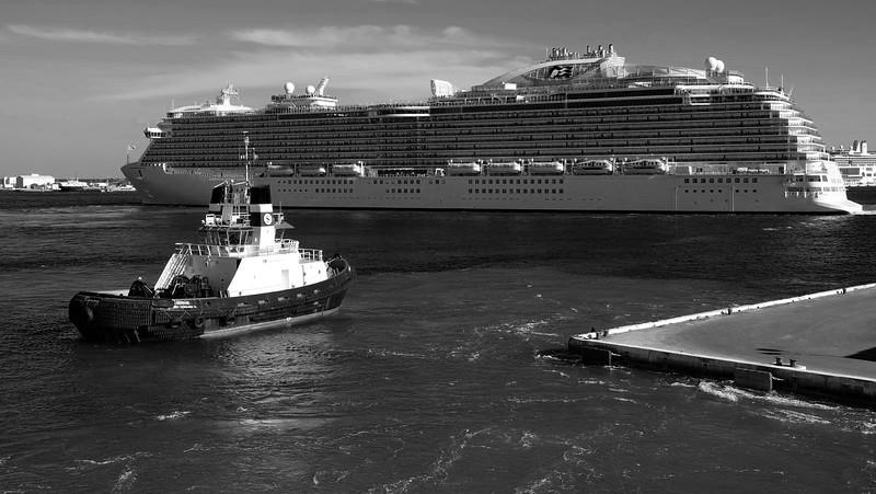 Cruise 03-06-2016 193a.jpg