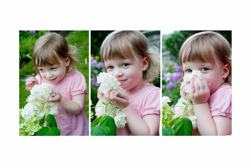 smelling the flowers 12x18.jpg