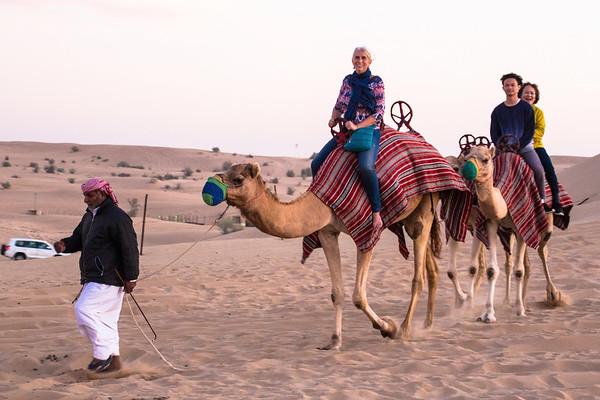 Camel ride, Desert Safari, Dubai - January, 2016