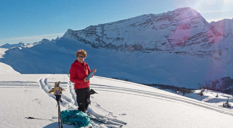 Campbell Icefield, January 2019