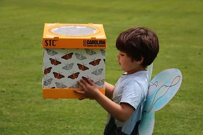 LS Kindergarten Butterflies 5-16-18