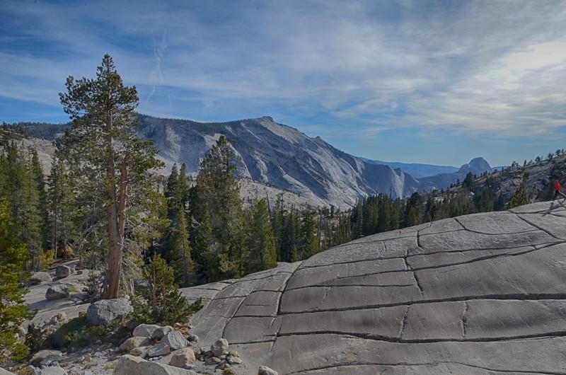 Sierra1.jpg