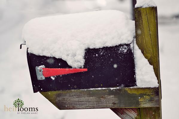 Kat Snow Images