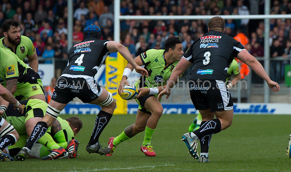 Exeter Chiefs vs Northampton Saints, Aviva Premiership, Sandy Park, 12 April 2015