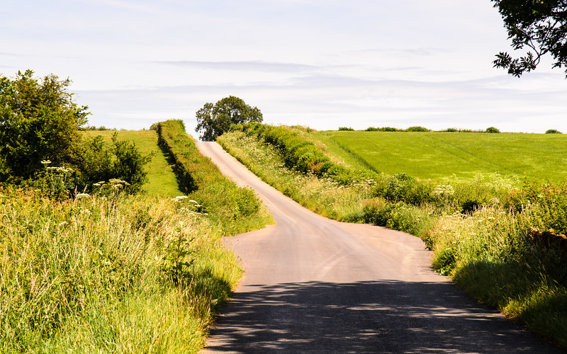 Dorset lane