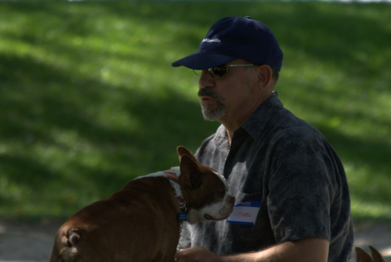 boston terrier oct 2010 167.jpg