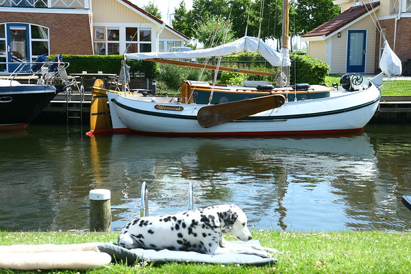2009_juni_Friesland