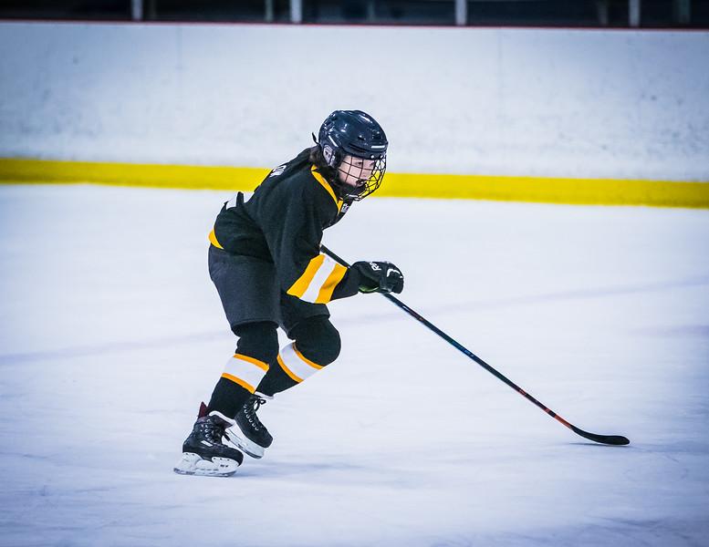 Bruins2-468.jpg