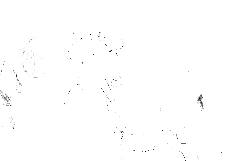 DSC05588.png