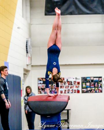 2019 01222018 Rosemount Gymnastics