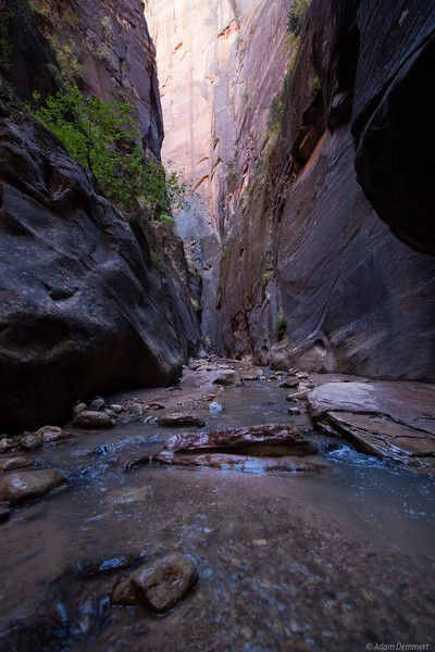 The Narrows, Zion National Park Utah
