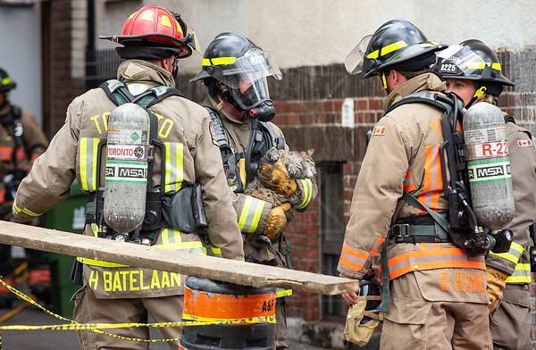 June 18, 2018 - Working Fire - 223 Woodbine Ave.