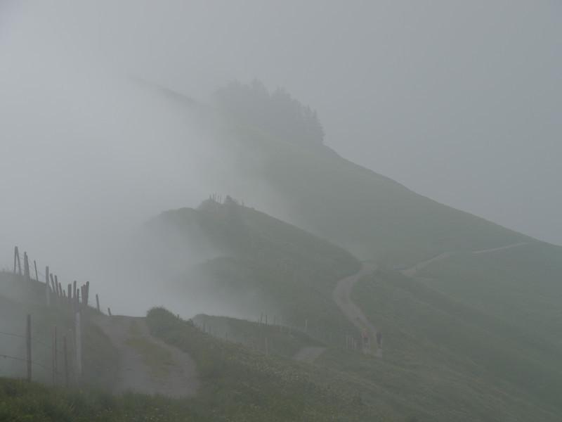 @RobAng 2013 / Bergspaziergang Hochybrig, Muotathal, Illgau, Kanton Schwyz, CHE, Schweiz, 1760 m ü/M, 2013/07/07 14:32:05