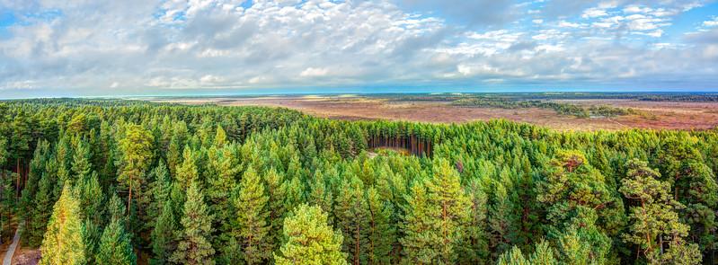 Eestimaa Loodus