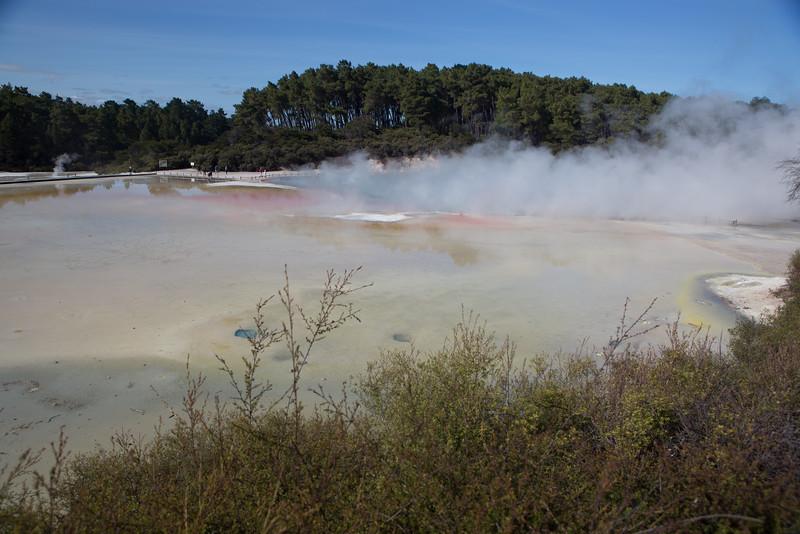 Rotorua Geothermal Region