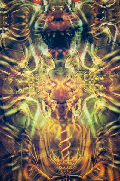 cosmo12_0250.jpg
