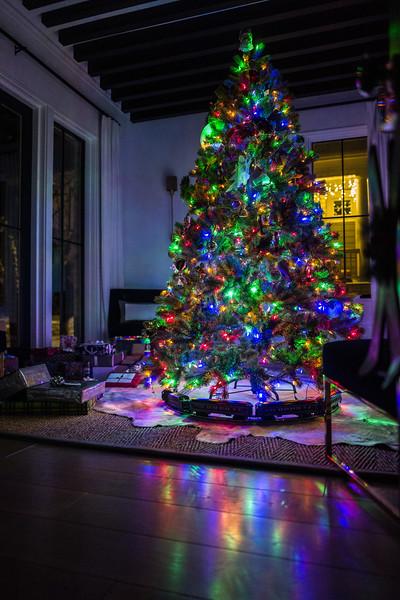 Christmas 2017-1080017.jpg